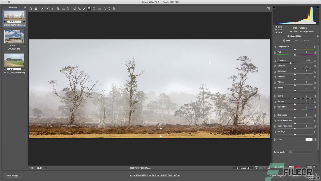 Adobe Camera Raw CC 11.4