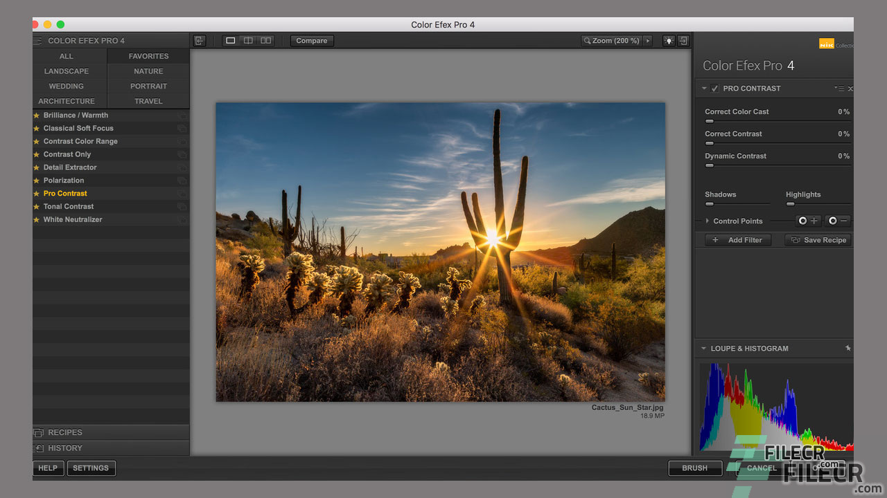 download color efex pro 4 crack mac
