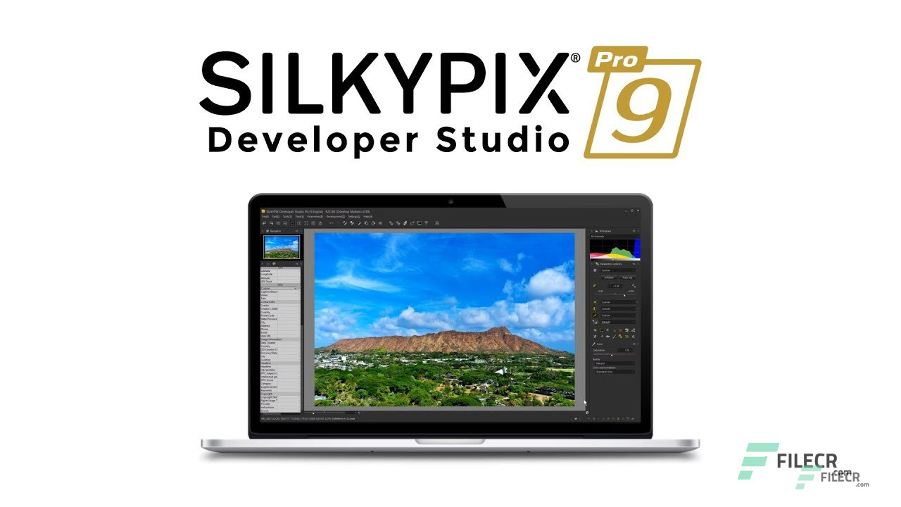 SILKYPIX Developer Studio Pro 9 for Windows Free Download