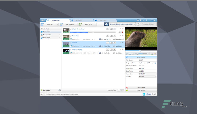 Any-DVD-Converter-Professional-Free-Download-02
